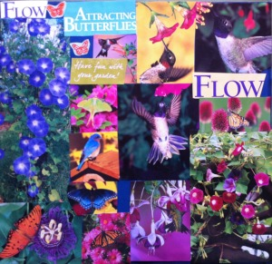Miriam Feldman_Flow_collage