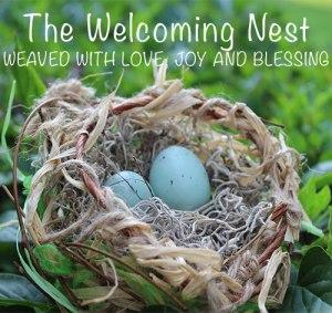 Nest-widget