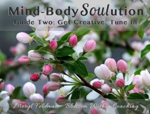 Mind-Body-Soul-ution_Guide2_BWC